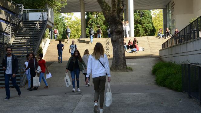 Distribution de protections périodiques gratuites sur les campus